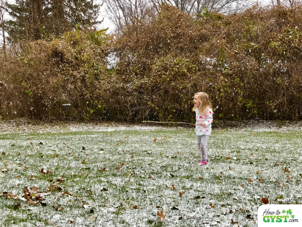 Refresh your daily routine – try something new – Scout playing in snow for the first time